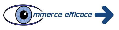 Commerce Efficace, L'infogérance en toute confiance